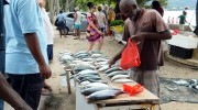 Seychellen, Angeln & Fischen, Direktverkauf am Beau Vallon