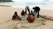 Seychellen, Angeln & Fischen, Makrelenschwarm