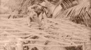 Seychellen früher