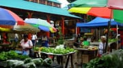 Regionale Produkte Seychellen local products Sir Selwyn Selwyn-Clarke Market Salat Gemüse