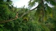 Lieblingsfoto Seychellen Susanna 2016