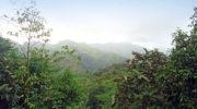 Wanderung am Morne Blanc auf Mahé, Seychellen